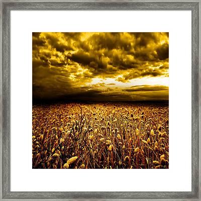 Golden Fields Framed Print by Jacky Gerritsen