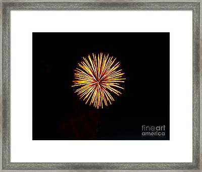 Golden Fireworks Flower Framed Print by Robert Bales