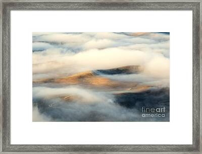 Golden Fleece Framed Print