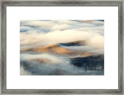 Golden Fleece Framed Print by Mike Dawson