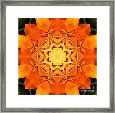 Golden Flower - Abstract - Kaleidoscope2 Framed Print by Barbara Griffin