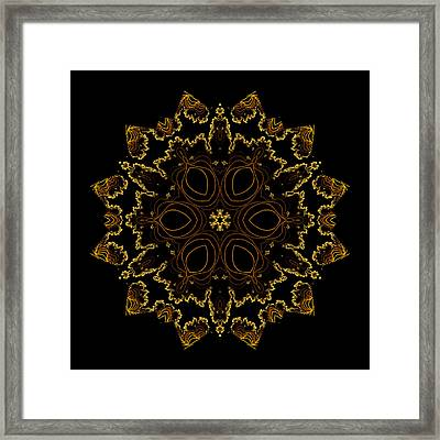 Golden Flower Of The Night Framed Print