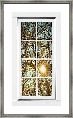 Golden Forest  Branches White 8 Windowpane View Framed Print