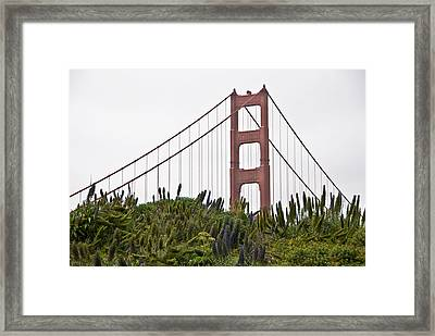 Golden Gate Bridge 1 Framed Print