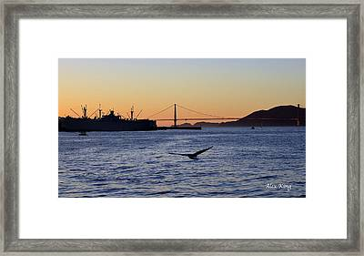 Golden Gate Bridge Framed Print by Alex King