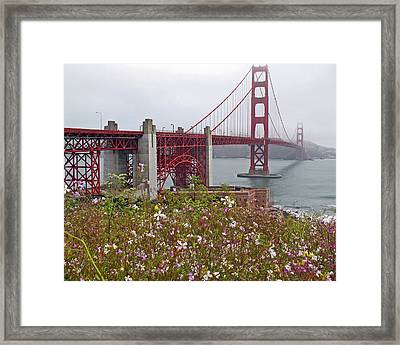 Golden Gate Bridge And Summer Flowers Framed Print by Connie Fox