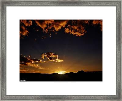 Golden Glow Framed Print by Barbara St Jean