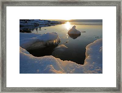 Framed Print featuring the photograph Golden Glow by Sandra Updyke