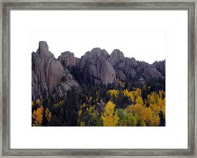 Golden Gold Camp Road Framed Print