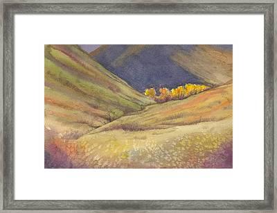 Golden Grove Framed Print