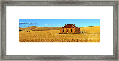 Golden Harvest Framed Print by Bill  Robinson