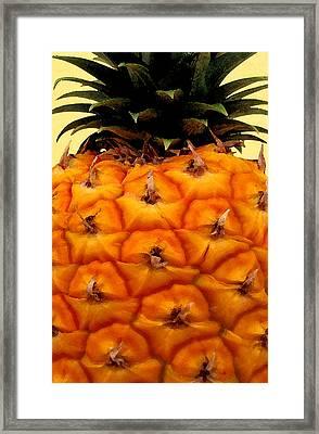 Golden Hawaiian Pineapple Framed Print by James Temple