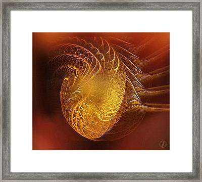 Golden Heart Framed Print by Gun Legler