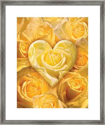 Golden Heart Of Roses Framed Print by Alixandra Mullins