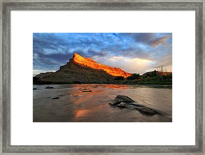 Framed Print featuring the photograph Golden Highlights by Ronda Kimbrow