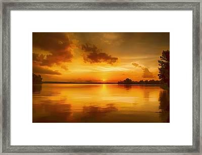 Golden Honey Sunset Framed Print by Dan Holland