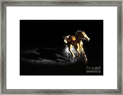 Golden Horse Framed Print