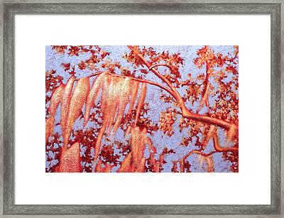 Golden Hour 7 Framed Print by Carlynne Hershberger