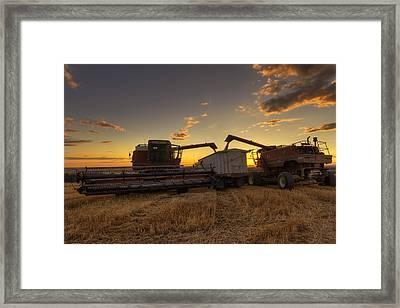 Golden Hour Grain Framed Print by Mark Kiver
