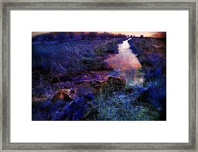 Framed Print featuring the photograph Golden Hour by Gunter Nezhoda