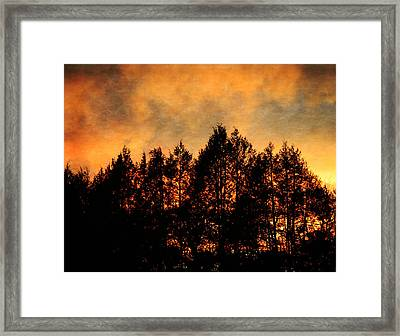 Golden Hours Framed Print