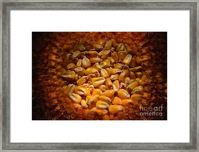 Golden Idols Framed Print by The Stone Age