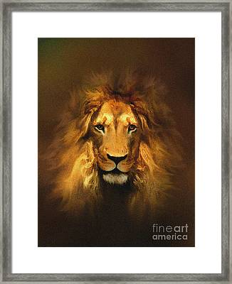 Golden King Lion Framed Print