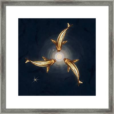Golden Koi And Lotus Framed Print