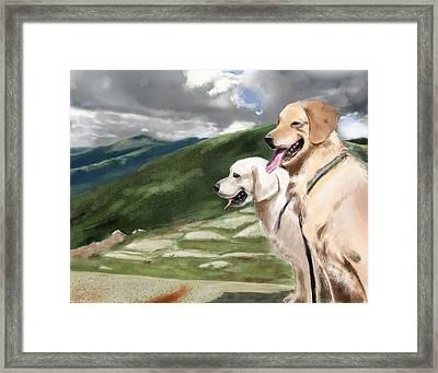 Golden Lab Framed Print by Eric Smith