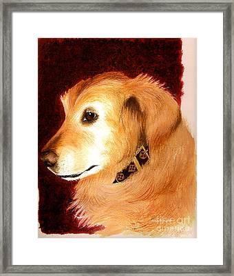 Golden Labrador Framed Print by Nan Wright