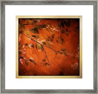 Framed Print featuring the digital art Golden Leaves-1 by Nina Bradica