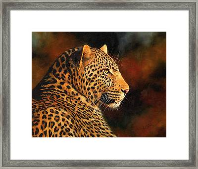Golden Leopard Framed Print by David Stribbling