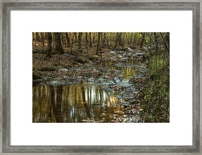 Golden Light In Arkansas Framed Print by Linda Unger