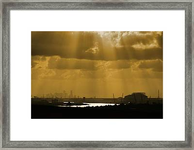 Golden Light Framed Print by Linda Unger