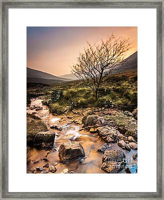 Golden Light River Framed Print by Maciej Markiewicz