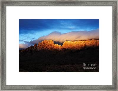 Golden Light Framed Print by Vivian Christopher