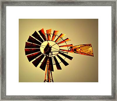 Golden Light Windmill Framed Print