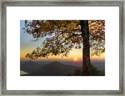 Golden Lights Framed Print by Debra and Dave Vanderlaan