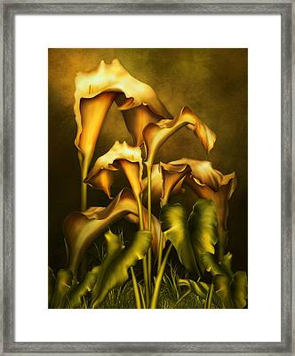 Golden Lilies By Night Framed Print