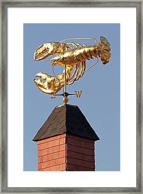 Golden Lobster Weathervane Framed Print by Juergen Roth