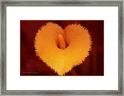 Golden Love Framed Print by Sonali Gangane
