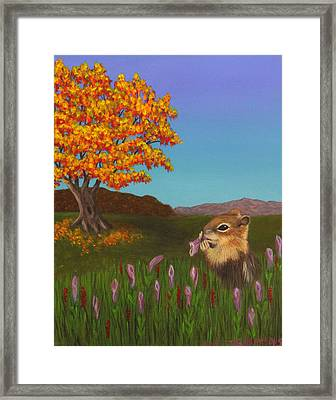 Golden Mantled Squirrel Framed Print