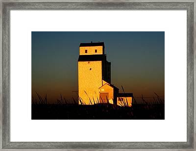 Golden Meadows Framed Print by Larry Trupp