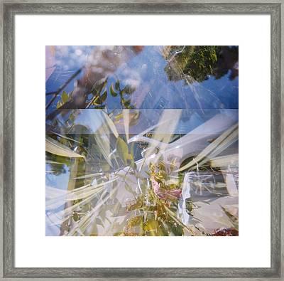 Golden Mean Holga Garden 1 Framed Print