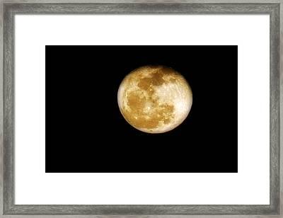 Golden Moon Framed Print