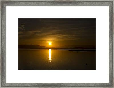 Framed Print featuring the photograph Golden Morn by Richard Stephen