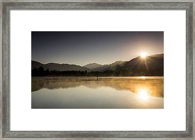 Golden Morning Framed Print by Aaron Bedell