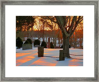 Golden Morning Framed Print by Dianne Cowen