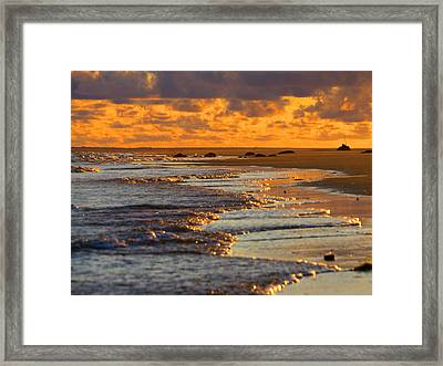 Golden Morning Light Framed Print by Dianne Cowen