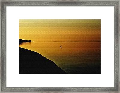 Golden Morning Framed Print by Michele Kaiser